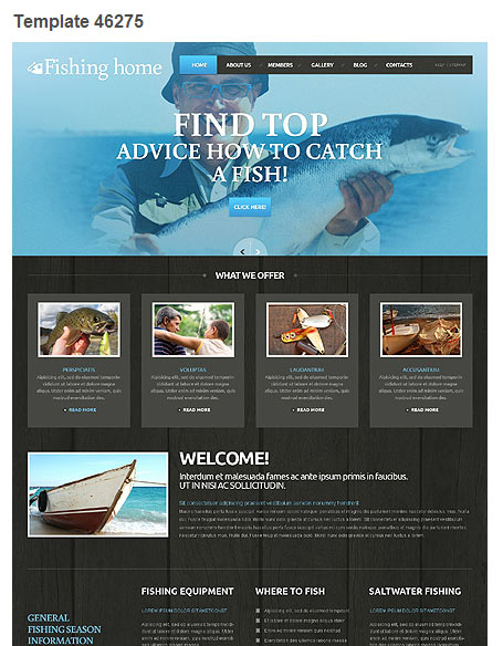 WordPress Theme 46275
