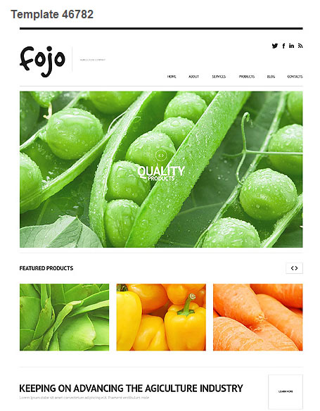 WordPress Theme 46782