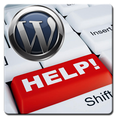 WordPress Help, Support and Assistance